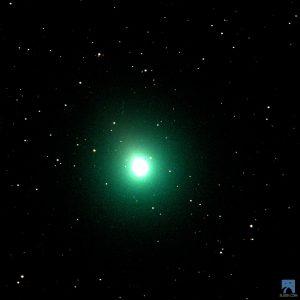 46P/Wirtanen beobachtete mit dem Slooh-Canary-One-Telescope am 1. Dezember 2018.